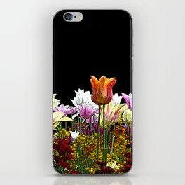 Tulips (black background) iPhone Skin