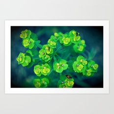 Green rhapsody Art Print