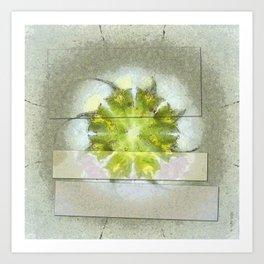 Fugler Beauty Flowers  ID:16165-063310-40571 Art Print