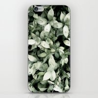 plant iPhone & iPod Skins featuring Plant by Alfredo Lietor