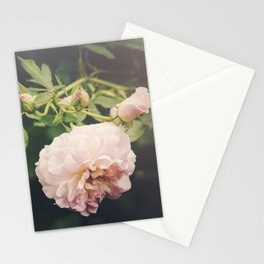 Pink Romance Stationery Cards