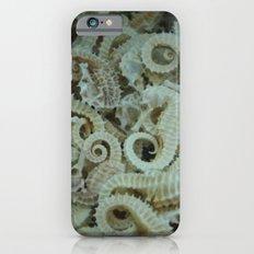 dried seahorse iPhone 6s Slim Case