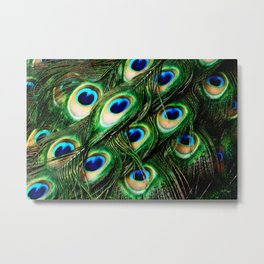O Feathers Metal Print