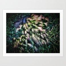 feather weeds Art Print