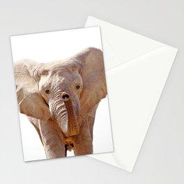 Elephant Art Stationery Cards