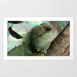 Iguana Art Print