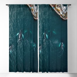 School of humpback whales playing with a boat Blackout Curtain