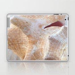 Conch Laptop & iPad Skin