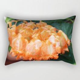 Hanging Orange Rectangular Pillow