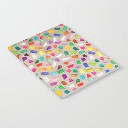 PRISMS Notebook