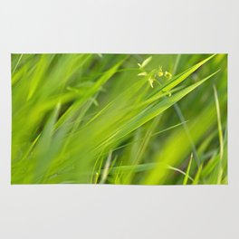 Shallow Blades of Grass Rug
