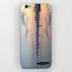 Mirror iPhone & iPod Skin
