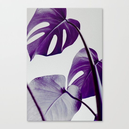 botanical vibes III Canvas Print