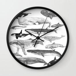 Cetology Wall Clock
