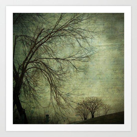 Mysterious Trees Art Print