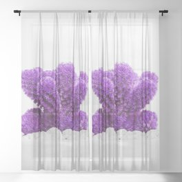 Modern Cactus X Sheer Curtain