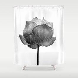 Beautiful Lotus flower in B&W  Shower Curtain