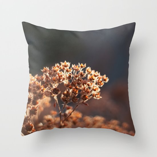 Morning's Light Throw Pillow