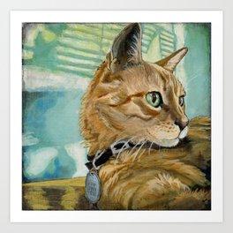 Orange Tabby Cat Resting Art Print
