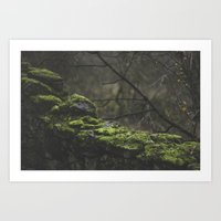 moss Art Prints featuring moss by Mylo Photography