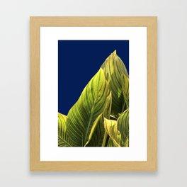 Tropical Lily Leaves Framed Art Print