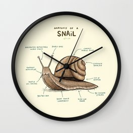 Anatomy of a Snail Wall Clock