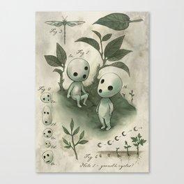 Natural Histories - Forest Spirit studies Canvas Print