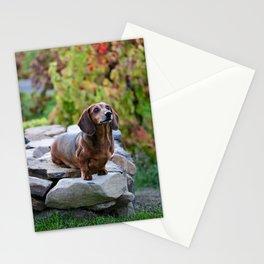 Autumn Dachshund Stationery Cards