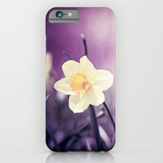 Purple Yellow Daffodil Flower Photography, Violet Nature Floral iPhone 6s Slim Case