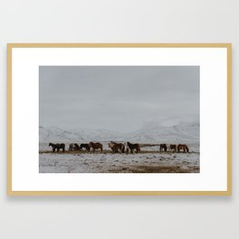 Of horses and mountains Framed Art Print