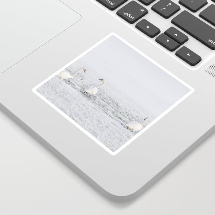 winter #society6 #decor #buyart Sticker