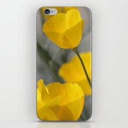 Closeup of California Poppies Coachella Wildlife Preserve iPhone Skin