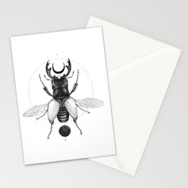 Sun Beetle Stationery Cards