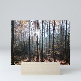Light Shining in the Forest Mini Art Print