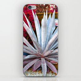 The Agave iPhone Skin