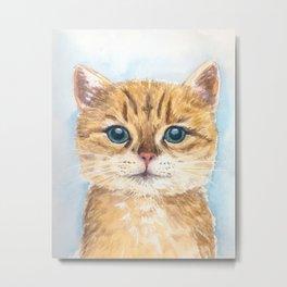 Yellow tabby cat Metal Print
