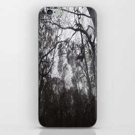 Trees on  a Stormy Day iPhone Skin