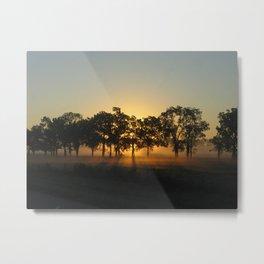 Sunrise Whispers Metal Print