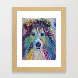 Sheltie Dog Framed Art Print