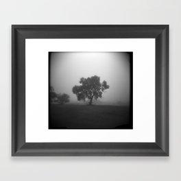 Tree in Field of Fog Framed Art Print
