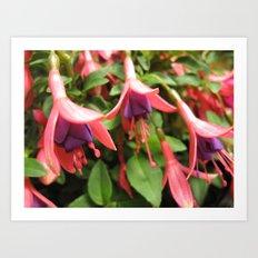 Floral Chandelier  Art Print