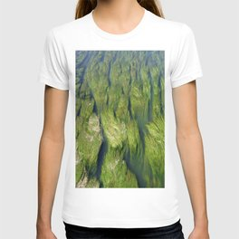 "Der fluss Limatt anschauend (Zurich) ""GEOROMANTIC"" series T-shirt"