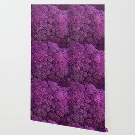 Purple Cauliflower Wallpaper