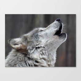 Howling Tundra Wolf Canvas Print