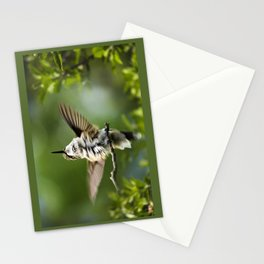 Hummingbird Happiness Stationery Cards