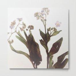 Leaf & Floral Metal Print