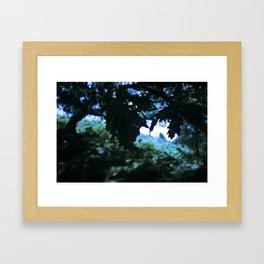 peepin' out Framed Art Print