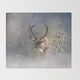 Santa Claus Reindeer in the snow Throw Blanket