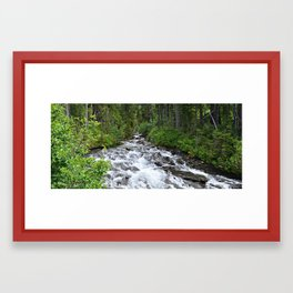 Forest Creek Framed Art Print