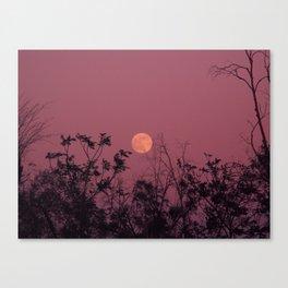 Morocco Magic Moon Canvas Print